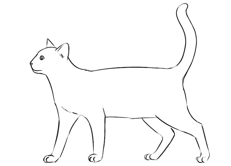 Cat Coloring Page easy for beginners