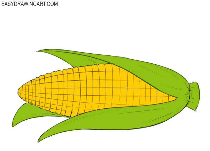 Corn cob coloring pages