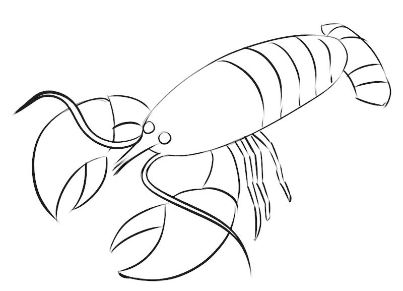 Crayfish Coloring Page