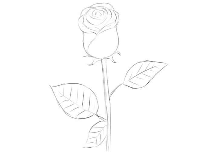 Easy Rose Coloring Pages