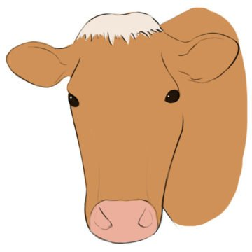 Cow Face Coloring Page printable