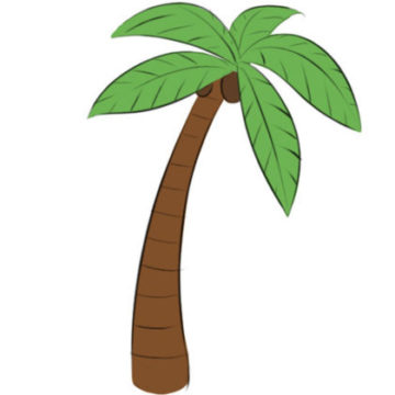 Palm Tree Coloring Page simple