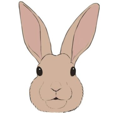 hare coloring page printable