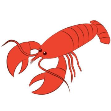 crayfish coloring