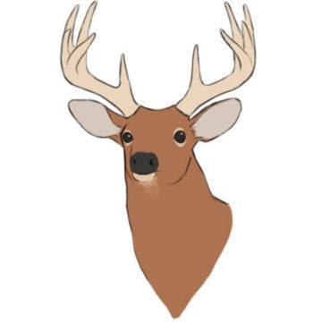 deer head coloring page printable