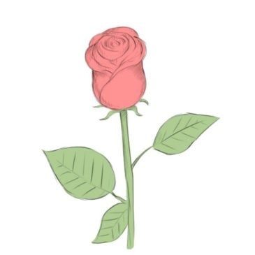 Easy Rose Coloring Page