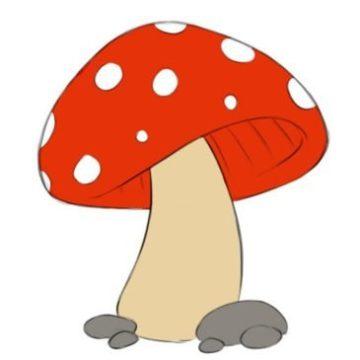 easy mushroom coloring page printable